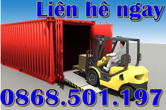 cau xe nang container